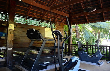The spa mini gym