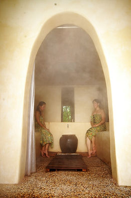 The spa herbal steam bath