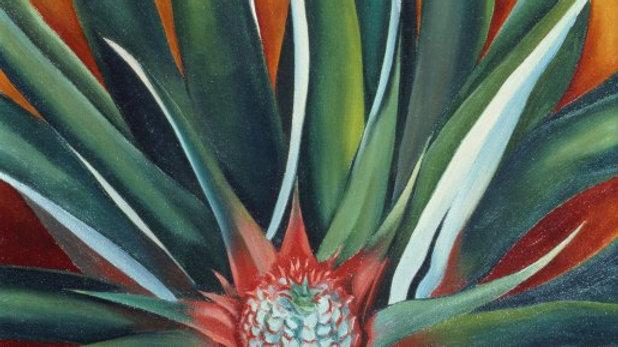 Pineapple Bud (1939) Georgia O'Keeffe