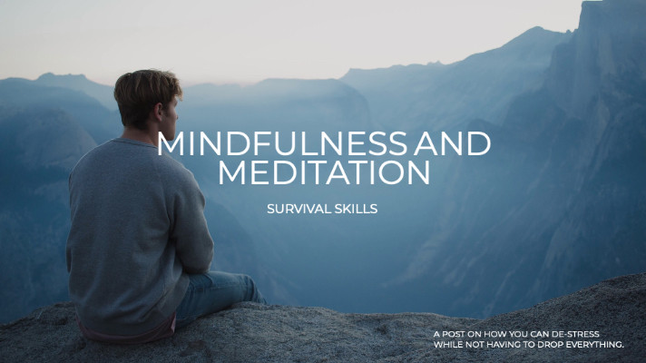 Mindfulness and meditation - survival skills