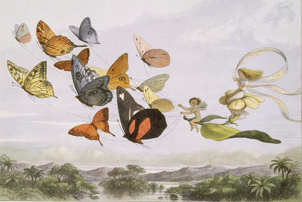 Richard Doyle | In Fairyland: A Series of Pictures from the Elf-World