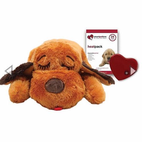 Heartbeat teddy.