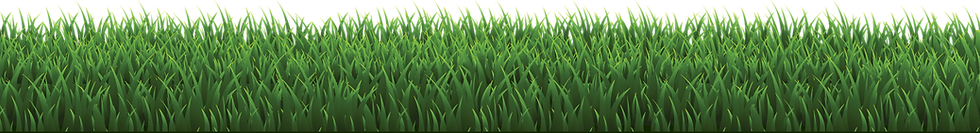 Grass%20vector_edited.png