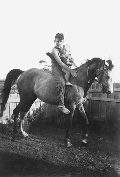 boys_horse_after.jpg
