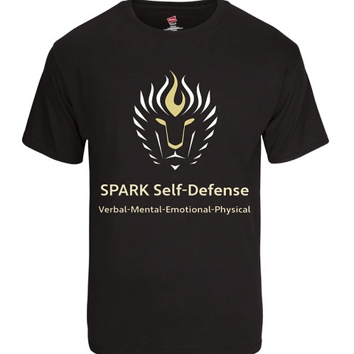 Hanes Men's Black SPARK T-shirt
