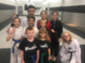 Group of Kids in Martial Arts Class.jpg