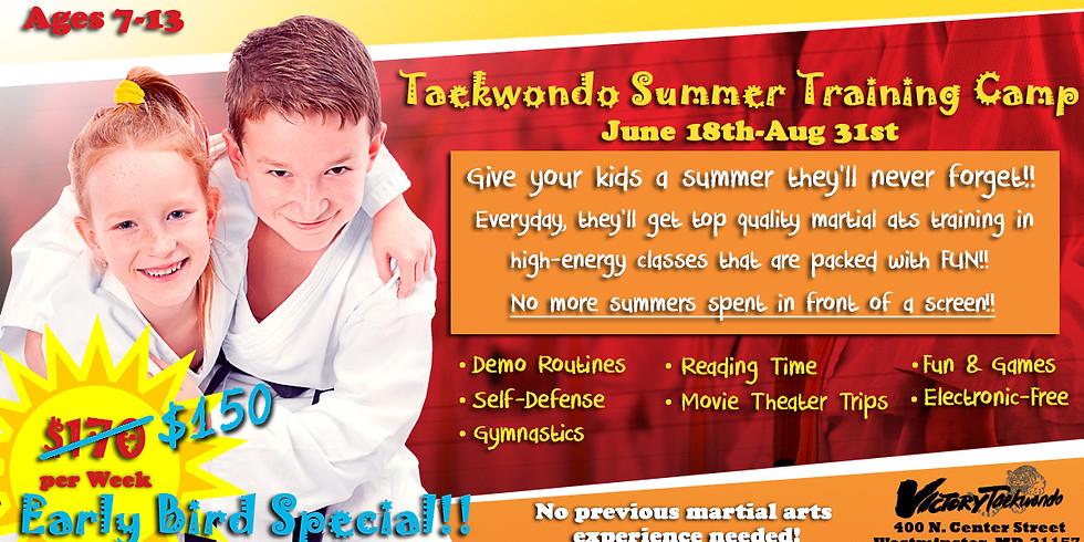 Taekwondo Summer Training Camp
