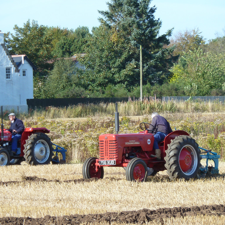 Cultivation Fun Day - 3rd Oct 2021