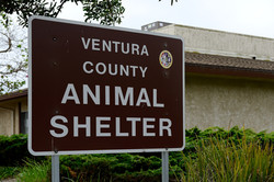 VCAS Welcome Sign