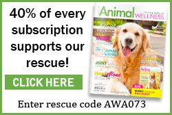Animal Wellness Mag 40% off