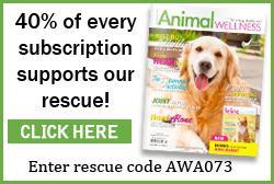 Animal Wellness Mag 40% off