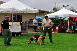 Ventura County Search and Rescue