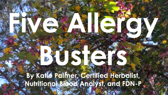 Five Allergy Busters