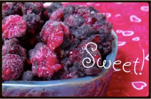 Chocolate Covered Berries- No Sugar