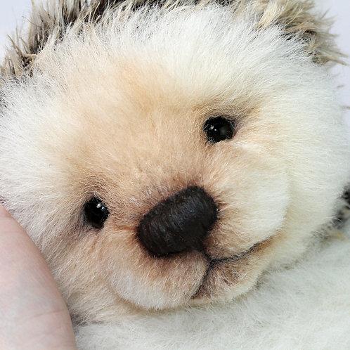"""""""Liebchen"""" the Hedgehog"""