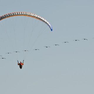 SD Glider Park-033.jpg