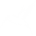 hummingbird-309492 - white_edited.png