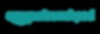 amazon launchpad.png