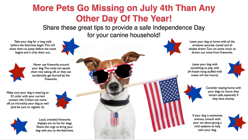 For humans, the 4th of July is a day with family celebrating with bbqs, parades, and fireworks. For