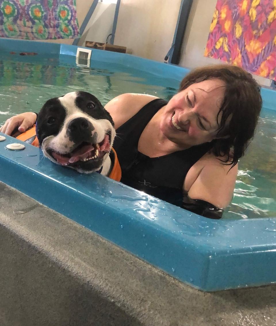 Canine Bodywork & Aquatics - A Loving Touch