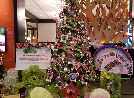 Boyd Gaming Trees of Hope