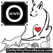 Logo - OMWHR newest.jpg