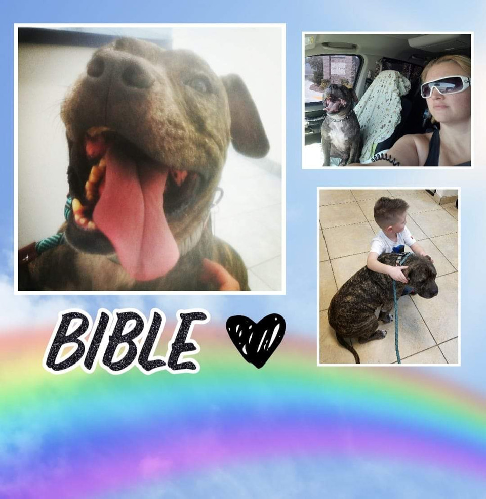 Bible... A story of faith and love