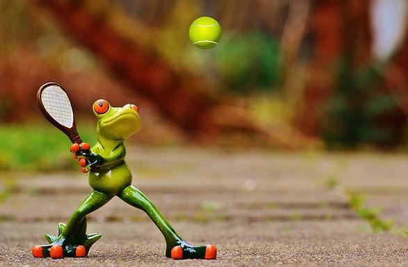 frog-1212392_1920.jpg