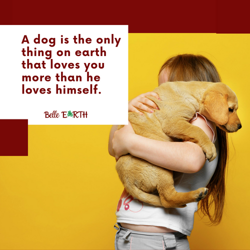 A dog is the only thing on earth that lo
