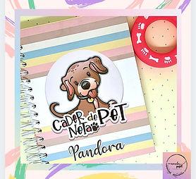Caderneta de Pet