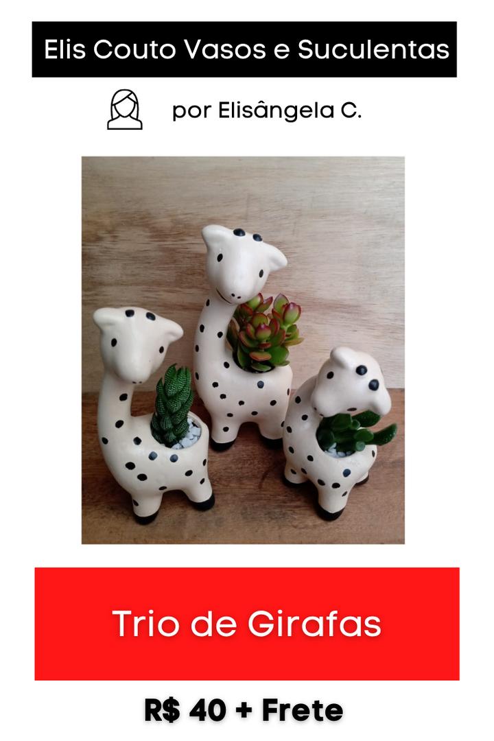 Trio de Girafas