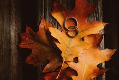 Γαμήλιες Βέρες.jpg