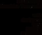 edit logo type.png
