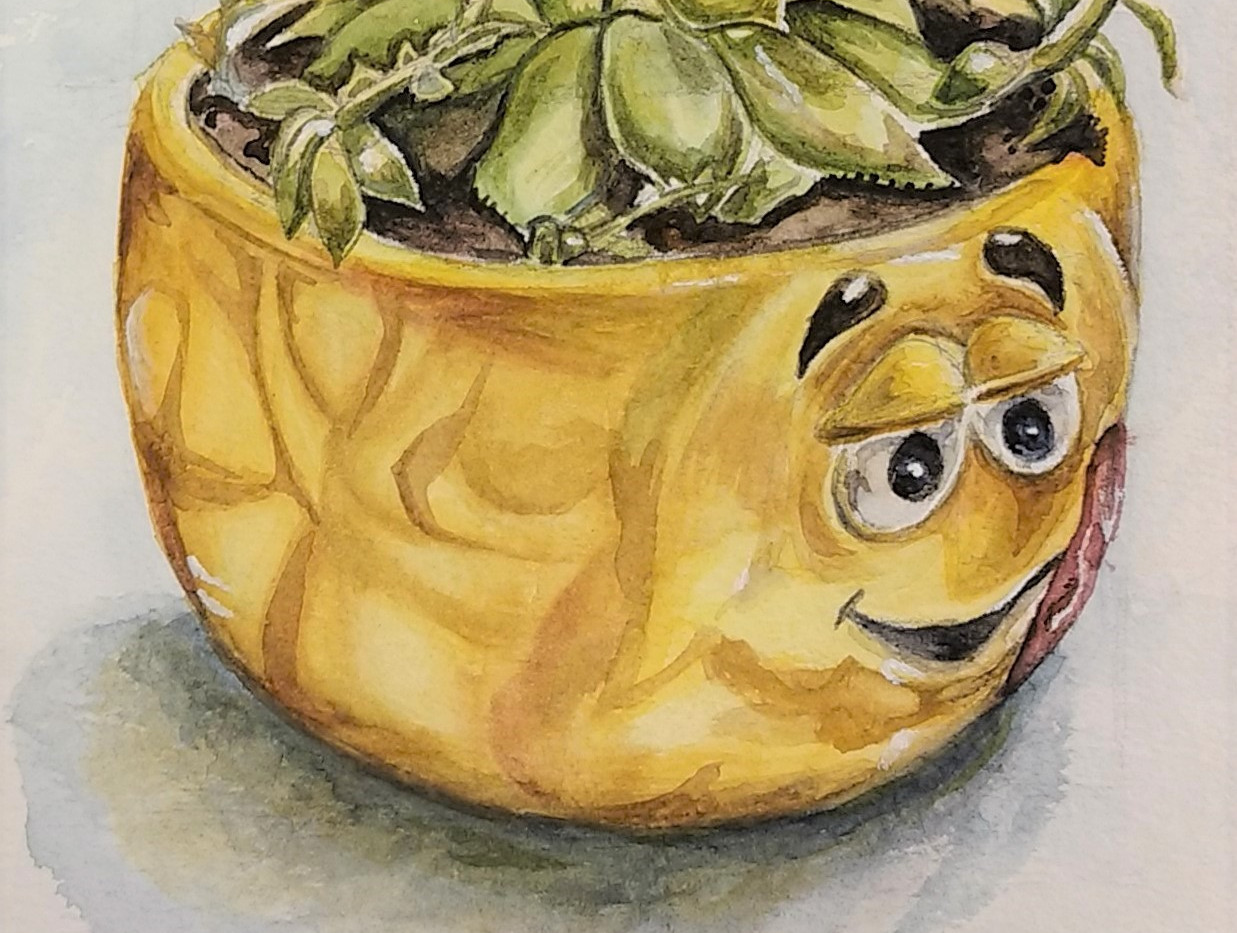 Succulent in a Peanut Pot
