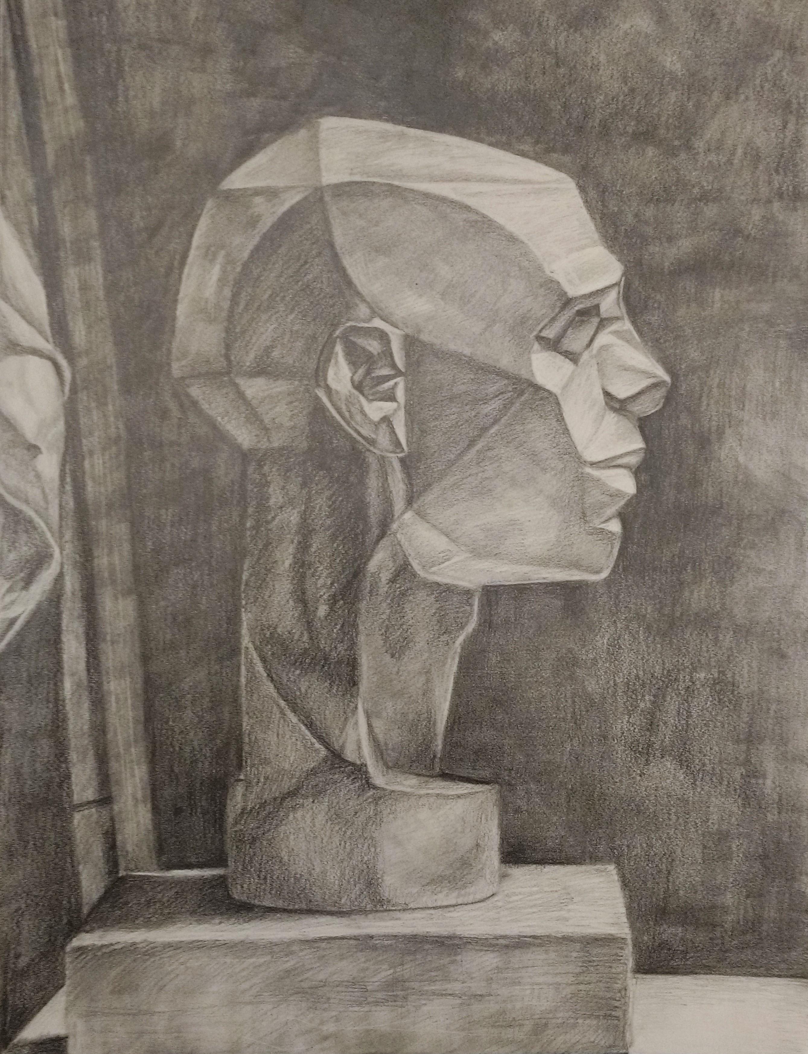 Planar Head Study