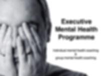 Executive mental health programme copy.j