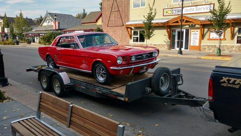 1711 - Mustang