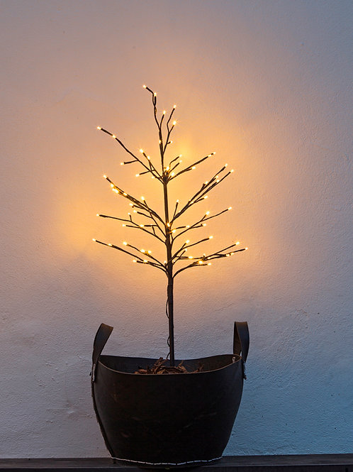 Alex - an elegant tree with warm white LEDs dusted with snow, at Source for the Goose, Devon