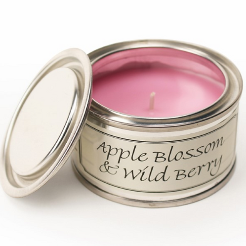 Buy Apple Blossom and Wild Berry Pintail Paint Pot Candle at Source for the Goose