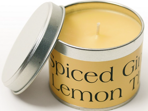 Spiced Ginger & Lemon Thyme Pintail Candle, British made homewares at Source for the Goose, South Molton, Devon