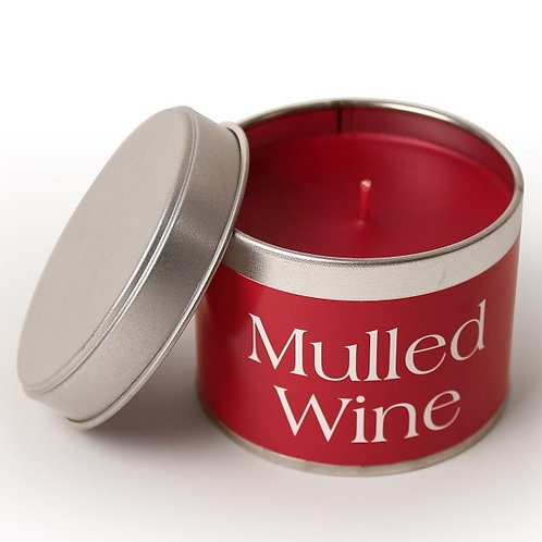 Mulled Wine Pintail Candle, scented British made candle at Source for the Goose, Devon
