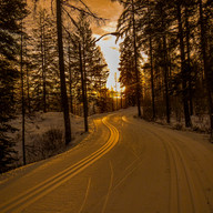 Sunrise Ski Trails by Neal Weisenberg