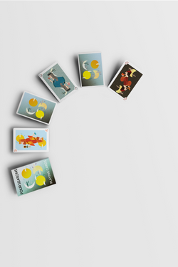 all_the_playing_cards