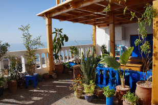 Terrace (2).JPG