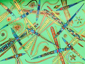Dragonflies as an art form