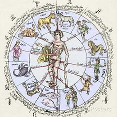 zodiaque et parties du corps