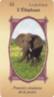 tarot sagesse animale