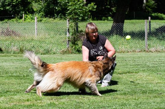 Hundeschule-Wolfspfote-29.jpg