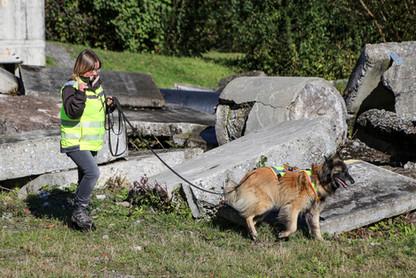 Hundeschule-Wolfspfote-31.jpg