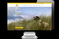 """Website für """"Hundeschule Wolfspfote"""""""
